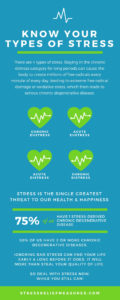 Types of Stress Infographic